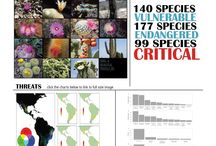 Plants / Horticultural journalism