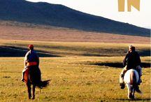 Cestování - Mongolsko