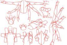 Referencias anatomicas