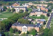 University of Maryland- College Park / University