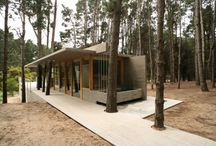 Modern Cabin Inspiration / by Lisa Dolan Photography