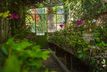 San Miguel Gardens / Beautiful gardens in a our Magical town of San Miguel de Allende