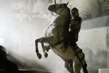 polish horse
