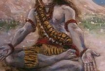 shivaaay