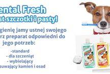Produkty dla psów / Akcesoria dla psów dostępne w naszym sklepie: http://sklep.codlapsa.pl