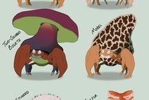 pokemon variation