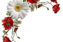 narożniki kwiatowe