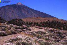 Hiking and walking in Canary Islands / Randonnée sur l'île de Tenerife
