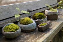 Ogrodnictwo pojemnikowe