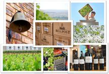 West Coast Wine Route / On the West Coast Wine Route, expect an intimate and fulfilling experience like no other - from charming, family-run farms in unique locations to some of South Africa's mos famous mega-wineries