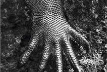 Hands comunication