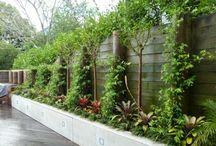 tuinen, bloemen etc. / Groenerijen
