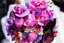 Flowers& cake. Wedding decoration