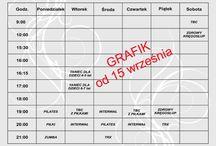 Studiofitnesscollege.pl / Grafik zima 2015