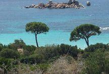 Palombaggia - Corse / Eau turquoise - 35´C