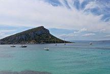 boat hire & boat trip @ Golfo Aranci