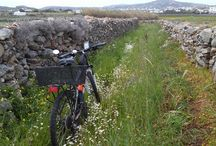 Mykonos bike tours - Yummy Pedals / Why should I choose Yummy Pedals for an adventure in Mykonos?
