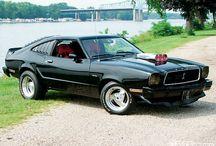 Mustangii's