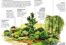 πλάνα για τον κήπο μου