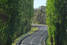 Road trip / Great driving around Glen Innes