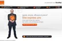 Orange / NordNet / Conception et création du site internet www.site-express-pro.fr, un site permettant aux TPE de créer leur propre site internet.  Campagne de communication sur le web.