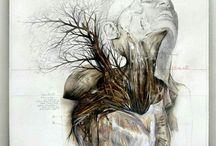 Darkness anatomy