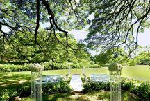 モアナルアガーデン マカイウエディングマウンド / ハワイ・オアフ島「モアナルアガーデン マカイウエディングマウンド」のウェディングボード。  オアフ島の観光スポットでも有名な公園「モアナルアガーデン」。 CMソングでも有名なモンキーポッドの樹木がこの場所の象徴です♪ フラの聖地でもある会場での儀式は、おふたりの誓いを神聖なものにしてくれます♡