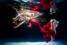 Mermaid / Sirene