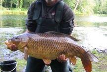 carp and freshwater fishing