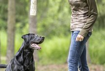 """Ladies Corner / """"Ladies Corner"""" is a segment of our show SportingDog Adventures dedicated to things women in the outdoors may find of interest. We are dedicating this board to the same."""