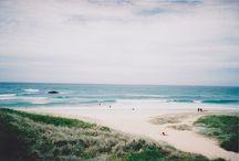 Penguins/Seashells / oh, how I MISS the sea!