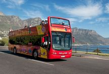 South Africa 2015 holiday ideas / by Erika Thorne