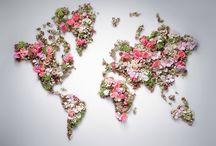 Bloemen, planten, bomen, struiken,