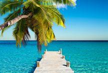 Plages / Toutes les plages super belles qui enveloppe ce beau monde ... :)