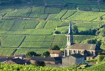 Călătorie în Champagne / Călătorie în #Champagne! Iulius Cezar și-a antrenat în provincia Champagne, iar, mai târziu. tot aici, romanii l-au înfrânt pe Atilla Hunul. Astăzi regiunea este împânzită de podgorii bine îngrijite în care cresc strugurii aurii #Chardonnay.