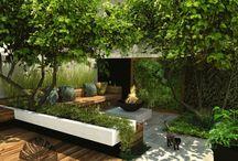Patio Garden