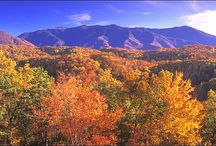 The Great Smokey Mountains / mountains