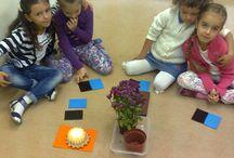 Тема Spring preschool / Идеи,игры,печать ,рабочие листы,сенсорные коробки,крафт / by Алиса