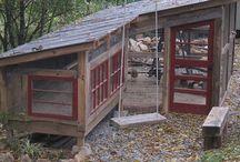 chiken house