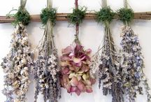 Real Dried Flowers / Ideas and inspiration for dried flower wreaths and decorations plus tips and tricks on how to dry flowers.