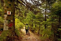 Go on a #mountain #biking #adventure for a change of scenery. Breathtaking #trails await! / Go on a #mountain #biking #adventure for a change of scenery. Breathtaking #trails await!