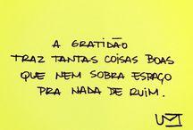 Gratitude ☘️