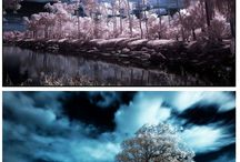 Infrarouge / Infrared photo