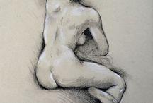 human body studies