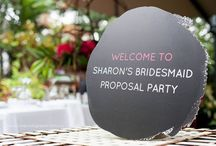A proposal for my maids / Bridesmaids proposal party