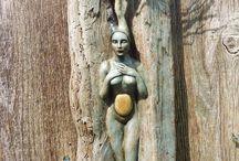 Driftwood inspirations