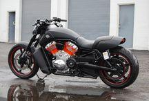 Harley Muscle