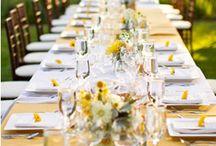 a vineyard wedding / by Johnna Hansen