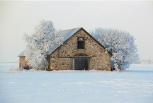 Barns / by Marcine Cooper