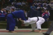 martial arts vid
